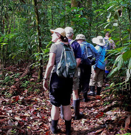 Guided hiking tour to Corcovado National Park