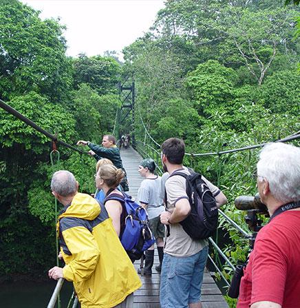 Monteverde-Guided-Hanging-Bridges-Tour