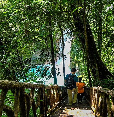 Luxury Escape to the Golden Coast of Costa Rica (5 days & 4 nights)