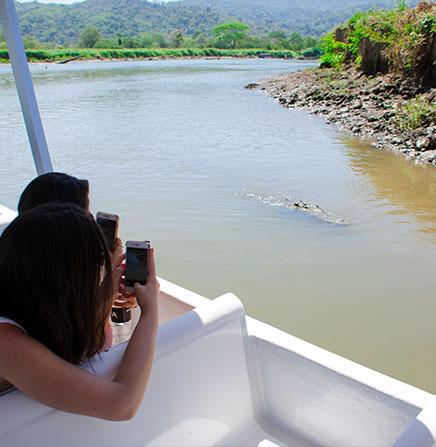 Safari-Boat-Tour-Tarcoles-River-Costa-Rica