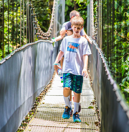 Guided walking tour along the hanging bridges over the cloud forest.