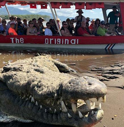 Crocodile-Safari-Boat-Tour-Tarcoles-River