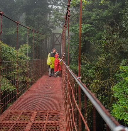 monteverde-hanging-bridges-walk