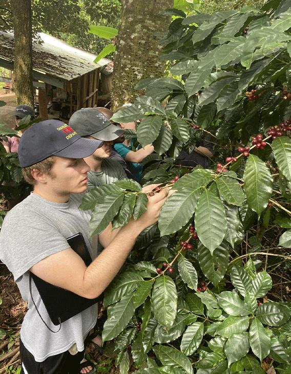 Benefits-GWA-Volunteer-Costa-Rica